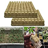 Grodan Steinwolle Anzucht matte, Importierte Steinwolle Bodenloses Kultur Substrat, Landwirt schaftliche Stecklinge 2,5 x 2,5 x 4 cm